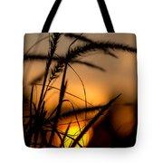 Evening Arrives Tote Bag
