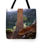 Evening At Barstow Tote Bag