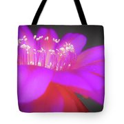 Evening At The Ballet Tote Bag