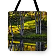 Evening Birches Tote Bag
