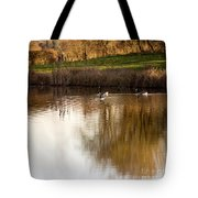 Evening By The Pond Tote Bag