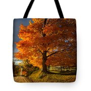 Evening Drive Tote Bag