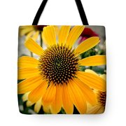 Evening Flower Tote Bag