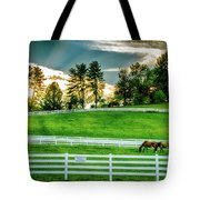 Evening Graze In Tennessee Tote Bag