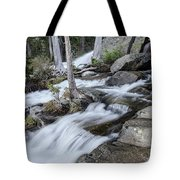 Evening Hikes Tote Bag by Margaret Pitcher