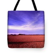 Evening In The Arizona Desert Tote Bag