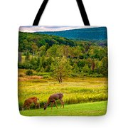 Evening In The Valley 2  Tote Bag