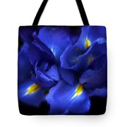 Evening Iris Tote Bag