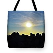 Evening Is Coming Tote Bag