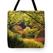 Evening Light 1 Tote Bag