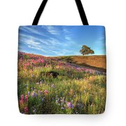 Evening Light At North Table Mountain Tote Bag