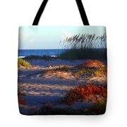 Evening Light At The Beach Tote Bag