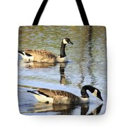 Evening Light On Nature Tote Bag