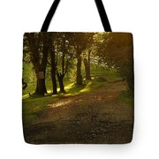 Evening Path Tote Bag