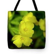 Evening Primrose Tote Bag
