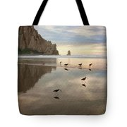 Evening Reflection Tote Bag