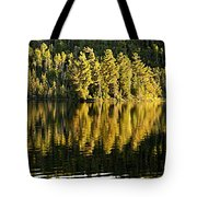 Evening Reflections On Alder Lake Tote Bag