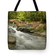 Evening Rush Tote Bag