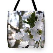 Evening Show - Cherry Blossoms Tote Bag