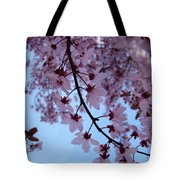 Evening Sky Pink Blossoms Art Prints Canvas Spring Baslee Troutman Tote Bag