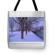 Evening Snow Path At Waterfront Park Burlington Vermont Poster Greeting Card Tote Bag
