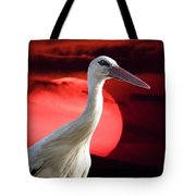 Evening Stork  Tote Bag