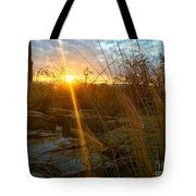 Evening Sun Rays In The Desert Tote Bag