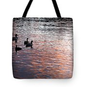 Evening Swim Tote Bag