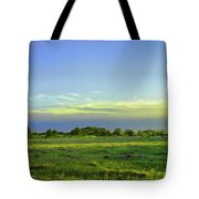 Everglades Panorama  Tote Bag
