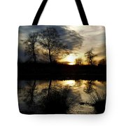 Everglade View Tote Bag
