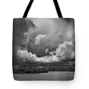 Everglades 0257bw Tote Bag