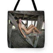 Everglades City Beauty 567 Tote Bag