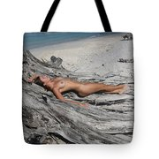 Everglades City Beauty 623 Tote Bag