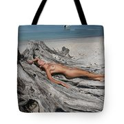 Everglades City Beauty 627 Tote Bag