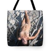 Everglades City Beauty 652 Tote Bag