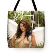 Everglades City Fl. Professional Photographer 4198 Tote Bag