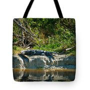 Everglades Crocodile Tote Bag