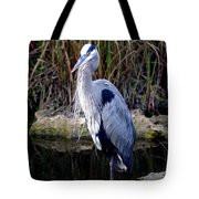 Everglades Heron Tote Bag