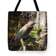 Everglades Inhabitant Tote Bag