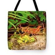 Everglades Locust Tote Bag