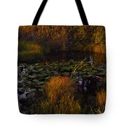 Everglades Pond Tote Bag