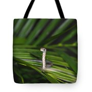 Everglades Racer Tote Bag