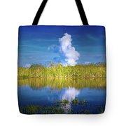 Everglades Smoke Tote Bag