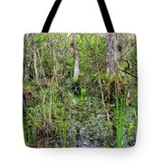 Everglades Swamp Two Tote Bag