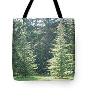 Evergreen Dance Tote Bag