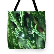 Evergreen Dew Tote Bag