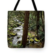Evergreen Stream Ravine Tote Bag