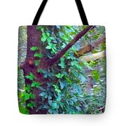 Evergreen Tree With Green Vine Tote Bag