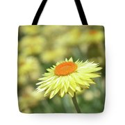 Everlasting Daisy Tote Bag