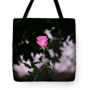 Every Rose Has Its Thorn Tote Bag